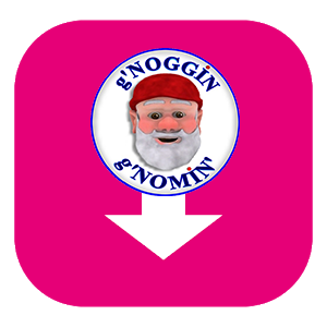 g'Noggins Soundbites – Pack of 20 Soundbites