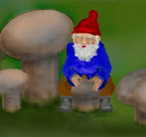 Gnome on a Shroom